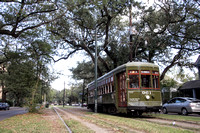 IMG_5945ent_streetcartrees