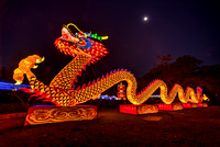 dragon_full_chinalights-Edit