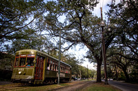 IMG_5954ent_streetcartrees